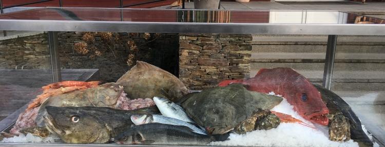 Festival ryb na Jurečku